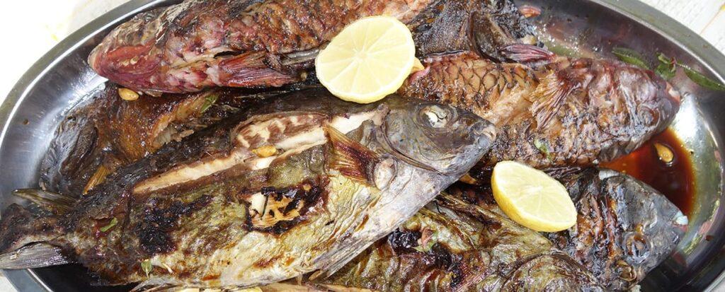 Timor-Leste: Food, Steak, Seafood, Bbq, Animal, Clam, Invertebrate, Oyster, Sea Life, Seashell, Dish, Meal, Plate, Platter, Beverage, Drink