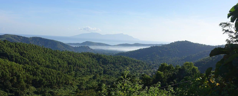 Timor-Leste: Lake, Outdoors, Water, Flora, Forest, Land, Nature, Plant, Tree, Vegetation, Crest, Mountain, Mountain Range, Conifer, Alps, Spruce, Rainforest, Bush, Coast, Ocean, Sea, Countryside, Jungle, Wilderness, Landscape, Scenery