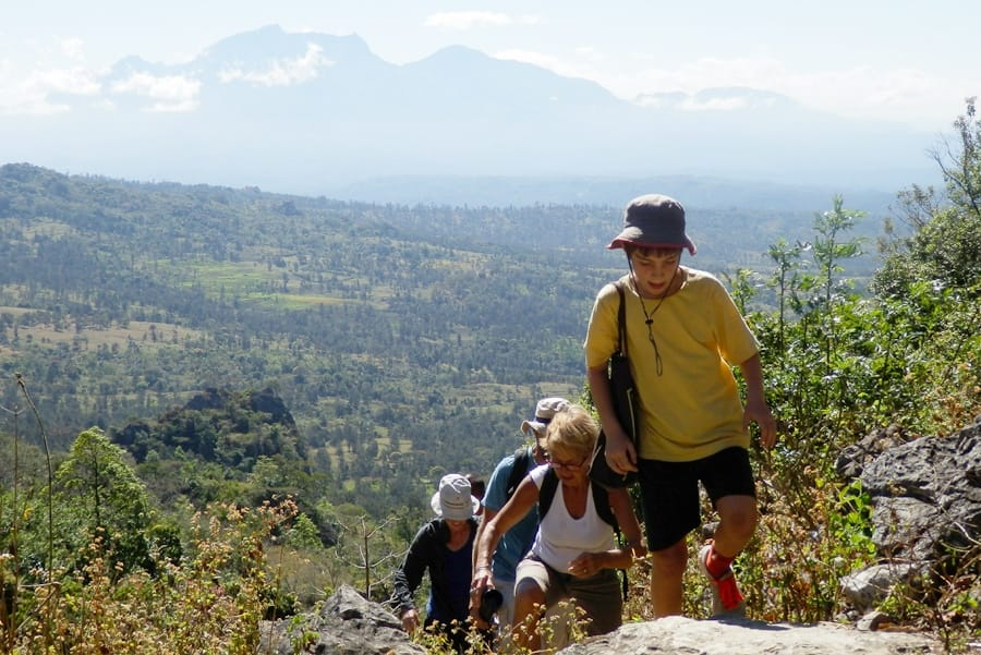 Timor-Leste: Human, People, Person, Hiking, Leisure Activities, Outdoors, Crest, Mountain, Mountain Range, Nature, Flora, Forest, Land, Plant, Tree, Vegetation, Rainforest, Jungle, Path, Trail, Conifer, Yew, Pine, Moss, Wilderness