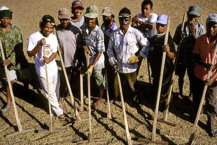 Timor-Leste: Person, Human, Soil, Clothing, Apparel, Tool, Archaeology, Hoe, Planting, Worker, Hat, Stick